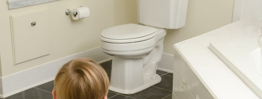 A toddler confronts the challenge that awaits him in learning how to use the toilet. A humorous metaphor for adults confrontiing their own goals.